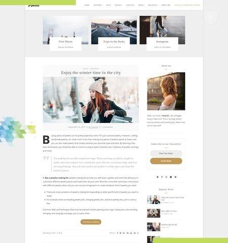 Anariel Lite इस साल के लिए सबसे अच्छा मुफ्त WordPress विषयों में से एक है।